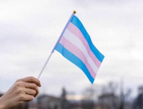 Pesquisa mapeia o perfil dos influenciadores transgêneros no Brasil