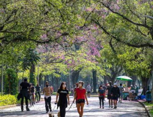 Pesquisa revela perfil esportivo do Parque Ibirapuera