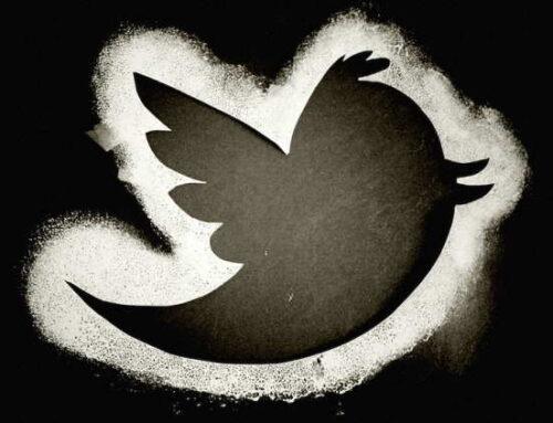 Brasileiros buscam opiniões úteis sobre as marcas e e-commerce no Twitter